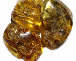 163 Cts Parcel 3 Tumbled Polished Rough Amber  AM 1785