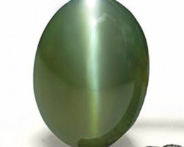 India Alexandrite Cat's Eye, 0.58 Carats, Olive Green to Dark Red Oval