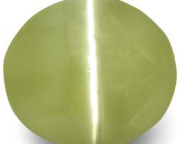 India Chrysoberyl Cat's Eye, 6.19 Carats, Greyish Greenish Yellow Oval