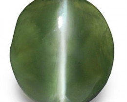 IGI Certified India Alexandrite Cat's Eye, 1.43 Carats, Oval