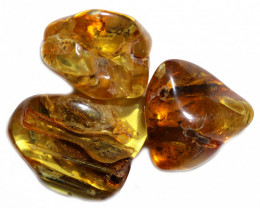 218 Cts Parcel 3 Tumbled Polished Rough Amber  AM 1788