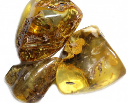 199 Cts Parcel 3 Tumbled Polished Rough Amber  AM 1789