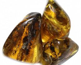 233 Cts Parcel 3 Tumbled Polished Rough Amber  AM 1791