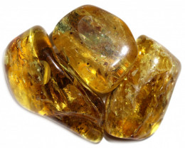 237 Cts Parcel 3 Tumbled Polished Rough Amber  AM 1793