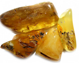 196 Cts Parcel 4 Tumbled Polished Rough Amber  AM 1796