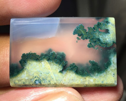 38 CT GORGEOUS EXOTIC TREE PICTURE MOSS AGATE INDONESIA