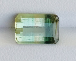 3.60 Carats Bi Color Tourmaline Gemstone