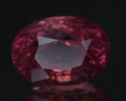 IGA Certified 1.56 Carats Natural Ruby Gemstone