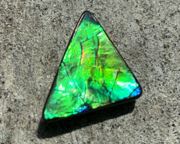 VERY BrIght & Flashy Natural Ammolite Gemstone Color Changer