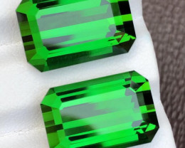 AAA Grade 20.15 ct 2 Pcs  Grass Green Afghan Tourmaline