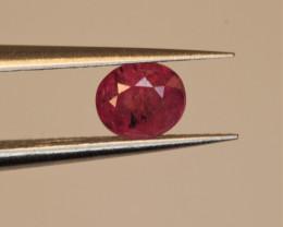 0.66  Carats Natural Ruby Gemstone