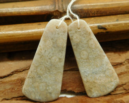 Fossil coral earring bead (G1880)