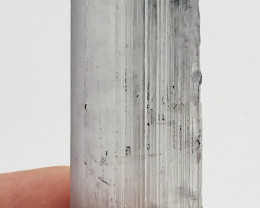 157 Carats Kunzite Crystal