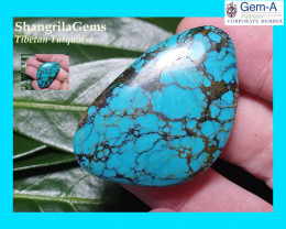 41mm 45ct Tibetan turquoise cabochon spiders web markings free form 41 by 2