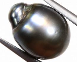 12 CTS - TAHITIAN BLACK PEARL    LG-503