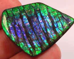 AMAZING PURPLES Excellent Pattern & Color Natural Ammolite Gem High Grade