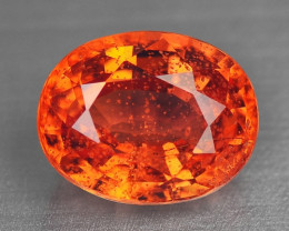 1.49 Carat Very Rare Red Color Sapphire Loose Gemstones