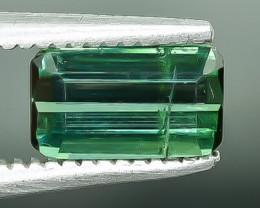 0.80 Crt Tourmaline Faceted Gemstone (Rk-22)