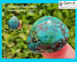 26mm 32ct Tibetan Turquoise CABOCHON 26 by 24 by 7mm freeform