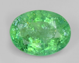 0.62 Cts Untreated Copper Bearing Green Color Natural Paraiba Tourmaline