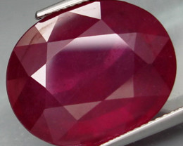 21.75  Cts. Top Quality Blood Red Natural Ruby Burma Gem