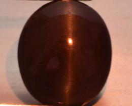 3.60 Carat Very Rare Sillimanite  Cats Eye Gemstone