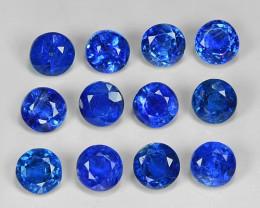 9.10 Cts 12Pcs Fancy Royal Blue Color Natural Kyanite Gemstone Parcel