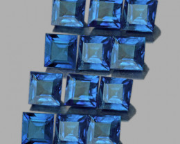 2.20 mm Square 12 pcs 1.14cts Blue Sapphire [VVS]