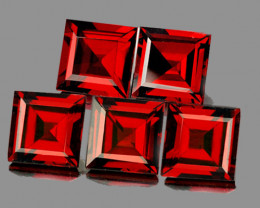 6.00 mm Square 5 pieces 7.42cts Red Garnet [VVS]