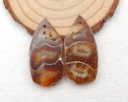 49.5cts Ammonite Fossil Earrings Handmade Earrings Gift G140