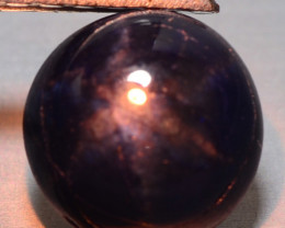 2.79 Cts Rare Natural Fancy Blue Star Sapphire Loose Gemstone