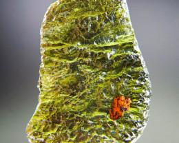 Rare Moldavite with ferruginous sandstone CERTIFIED