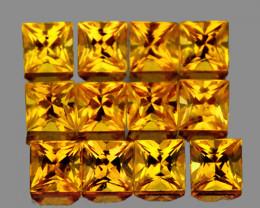 2.30 mm Square Princess 12 pcs 1.10cts Yellow Sapphire [VVS]