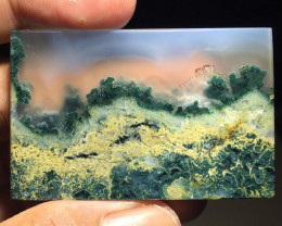 128.95 CT GORGEOUS MOSS AGATE PICTURE FROM INDONESIA