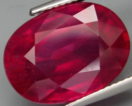 14.10 Cts. Top Quality Blood Red Natural Ruby Burma Gem
