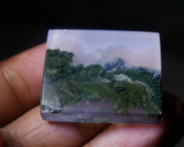 Picture most agate views of Jayawijaya's eternal forest.