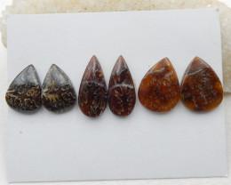65cts Hot natural ammonite cabochon beads semi-precious stone G293