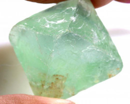 55CTS FLUORITE GREEN ROUGH UNTREATED RG-5156
