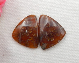 21CTS Twinkle Natural Ammonite Cabochon Pair ^ Fossil Cabochon Pair G292