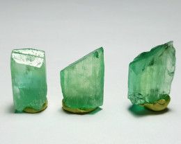 Amazing Damage free Gemmy quality 3 Hiddenite crystals 55Cts-A