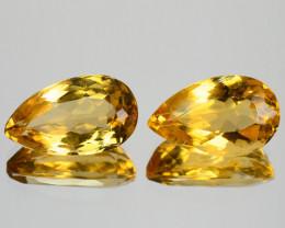 9.32 Cts Amazing Rare Golden Yellow Natural Beryl Gemstone Pairs