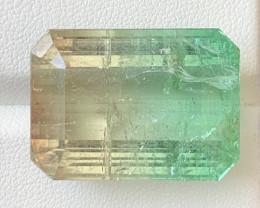 63.46 Carats Natural Bi Color Tourmaline Gemstone