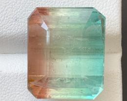 29.15 Carats Natural Bi Color Tourmaline Gemstone