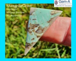 32mm Variscite Green cabochon geometric trillion Western Australia
