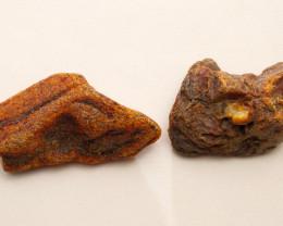 475 ct (95 gram) set of 2 raw Natural Baltic amber