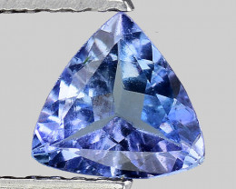 0.60 Ct Tanzanite Top Quality Gemstone. TN69
