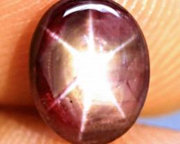 2.80 Carat Fiery, Fancy Star Ruby - Gorgeous