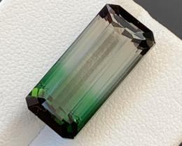 12.70 Carats Natural Bi Color Afghani Tourmaline Gemstone