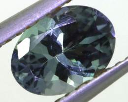 1.10 CTS TANZANITE  FACETED   CG -3119