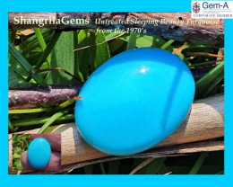 16.8mm Sleeping Beauty Light Turquoise oval cabochon totally untreated mine